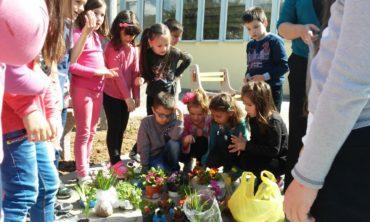 """""""Naša škola-naše dvorište"""""""